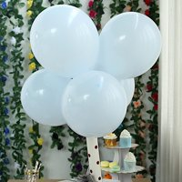 BalsaCircle 25 pcs 12-Inch Matte Round Latex Helium Balloons Wedding Events Birthday Reception Party Wholesale Decorations Supplies