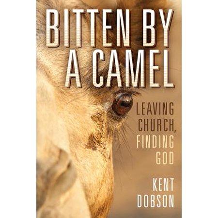 Bitten by a Camel : Leaving Church, Finding God