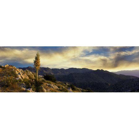 Clouds over Anza Borrego Desert State Park San Diego County California USA Stretched Canvas - Panoramic Images (27 x 9) ()