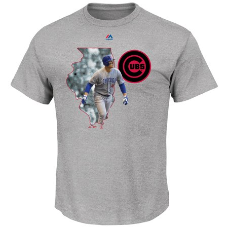 wholesale dealer 9e4bc fdb49 Anthony Rizzo Chicago Cubs Majestic The Bigger Prize Player T-Shirt - Gray