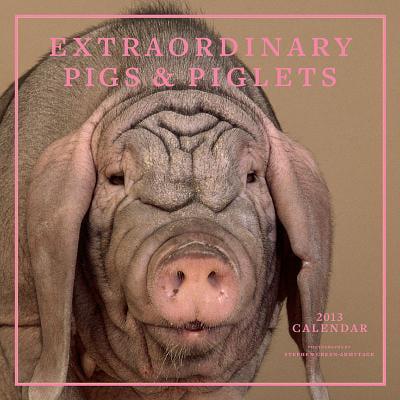 extraordinary piglets 2012 calendar