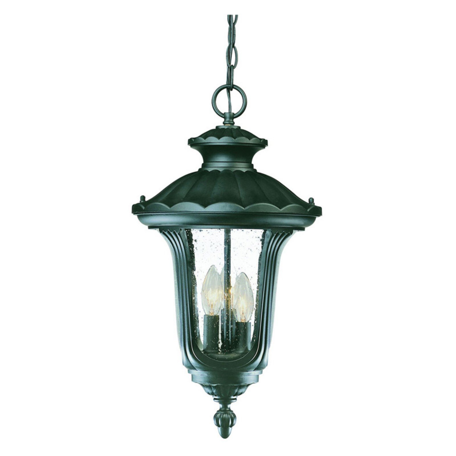 Acclaim Lighting Augusta Outdoor Hanging Lantern Light Fixture