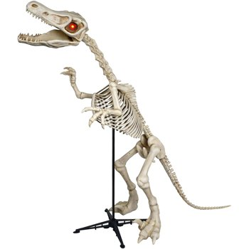 6-Feet Standing Skeleton Raptor with LED Illuminated Eyes