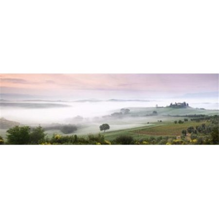 Foggy field  Villa Belvedere  San Quirico dOrcia  Val dOrcia  Siena Province  Tuscany  Italy Poster Print by  - 36 x 12 - image 1 of 1