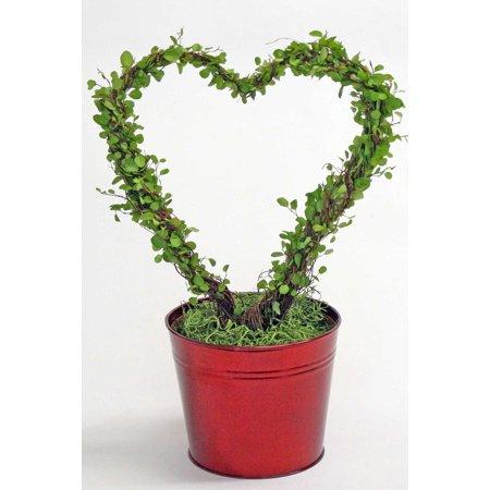Angel Vine Heart, Red Tin, 6.5