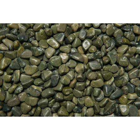 Fantasia Crystal Vault: 3 lb High Grade Green Jasper Tumbled Stones - XSmall - 0.5