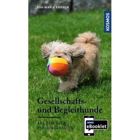 KOSMOS eBooklet: Gesellschafts- und Begleithunde - Ursprung, Wesen, Haltung - eBook (Moderne Haltung)