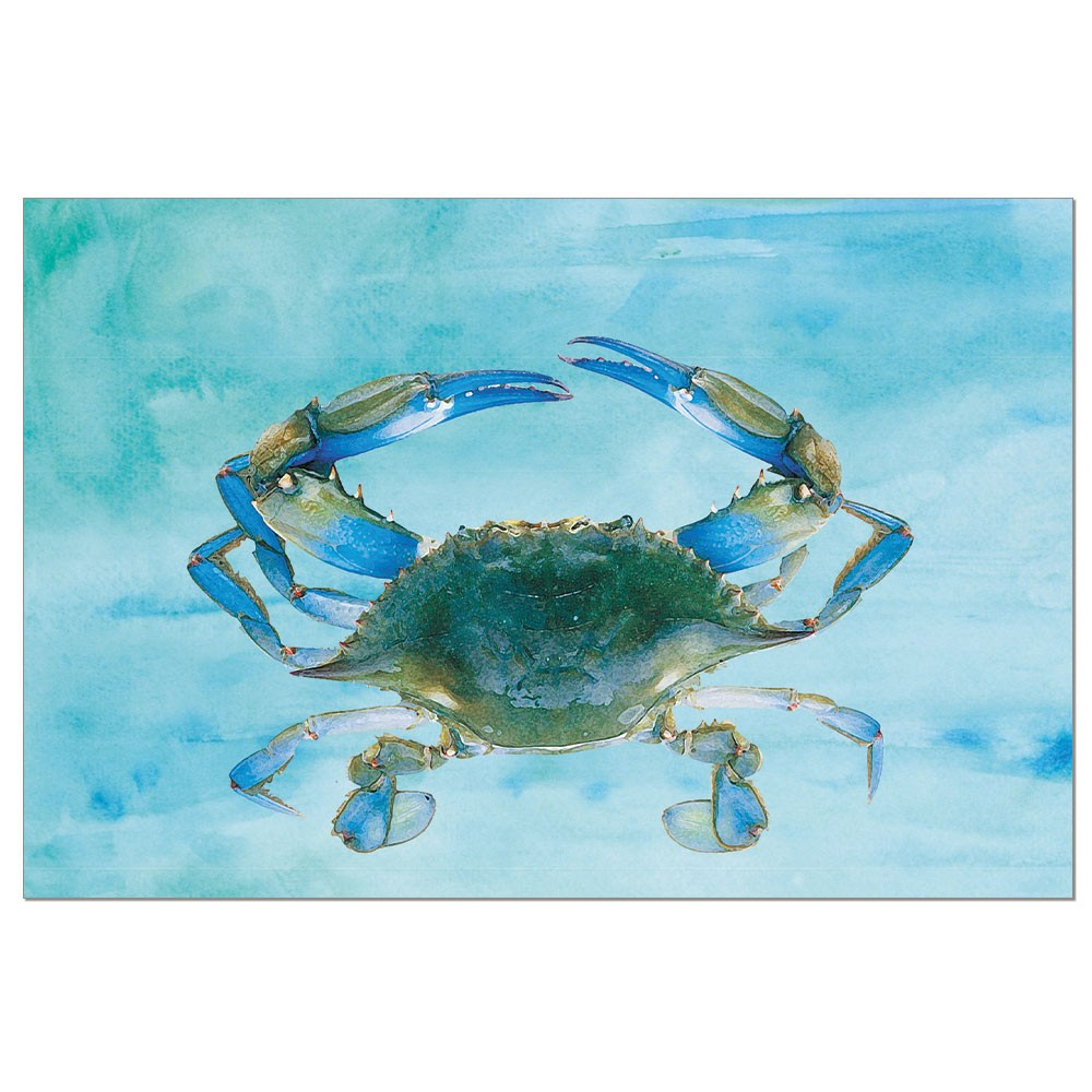 Tree-Free Greetings Blue Crab Boxed ECO Notes Blank Note Cards-FS56730