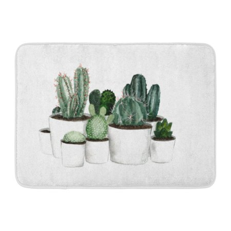 GODPOK Collection Botanical Watercolor Green Cactus in White Pots on Botany Color Rug Doormat Bath Mat 23.6x15.7 inch