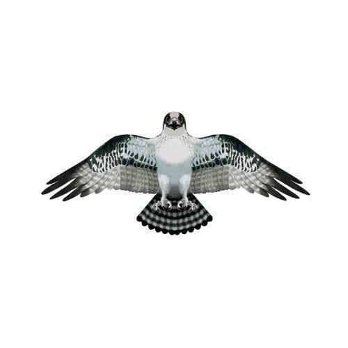 "Gayla Industries 852 Osprey Wildlife Wing Flapper Kite-55"" Wingspan (Single Kite) by Gayla"