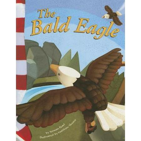 Amercian Eagle Kids (American Symbols: The Bald Eagle)
