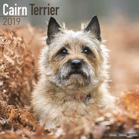 Cairn Terrier Calendar 2019 - Cairn Terrier Dog Breed Calendar - Cairn Terriers Premium Wall Calendar (Cairn Terrier Silhouette)