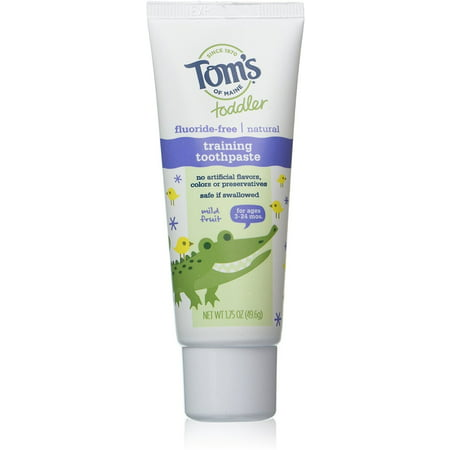 Tom's of Maine Toddler Fluoride Free Training Toothpaste, Mild Fruit 1.75 oz (Pack of 2) (Cheap Toms For Toddlers)