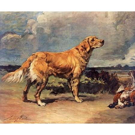 Golden Retriever Canvas Art - Maud Earl (20 x 24)