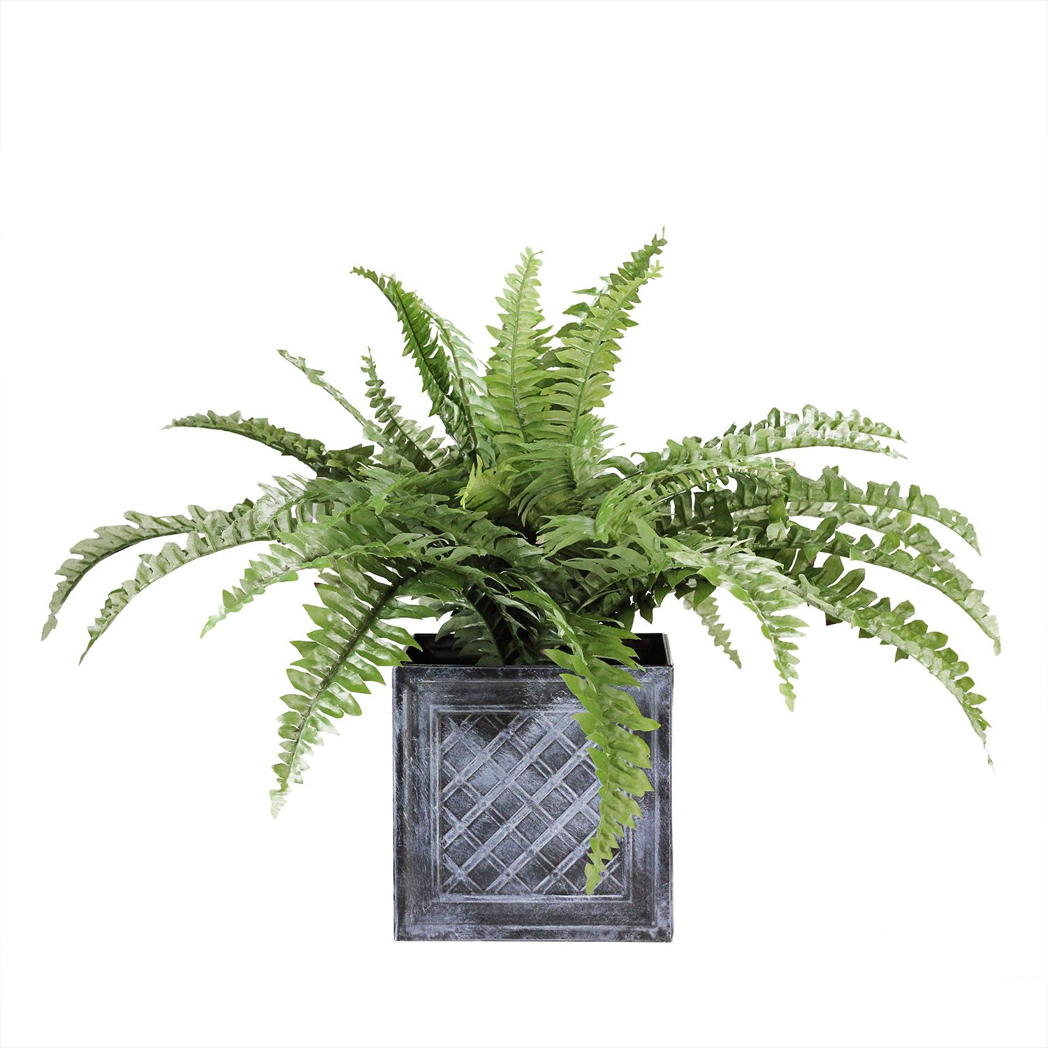 "20"" artificial boston fern in decorative distressed square black tin pot"