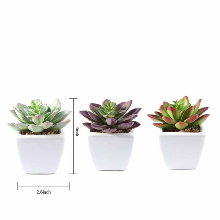 BalsaCircle 3 pcs 4-Inch Assorted Artificial Faux Echeveria Succulent Plants with Off White Pots Home Wedding Tabletop Decorations ()