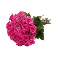 Fresh Flowers Flowers - Hot Pink Roses - 24 Bunch Gift