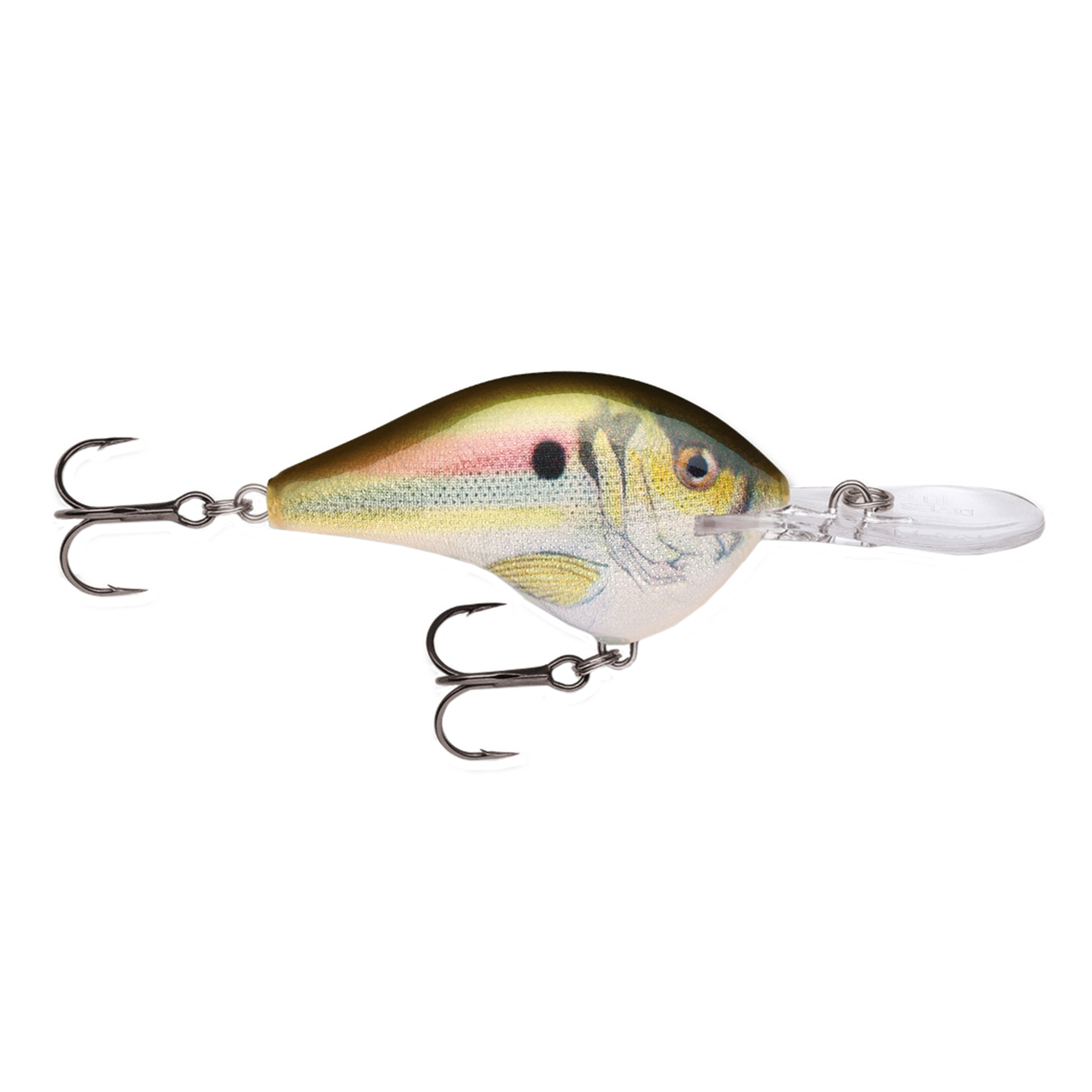 """Rapala Dives-To Series Custom Ink Lure Size 10, 2 1 4"""" Length 6' Depth 2 Number 4 Treble Hooks, Live River Shad, Per 1 by Rapala"""