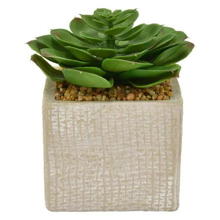 Three Hands 6 in. Aloe Succulent Silk Plant