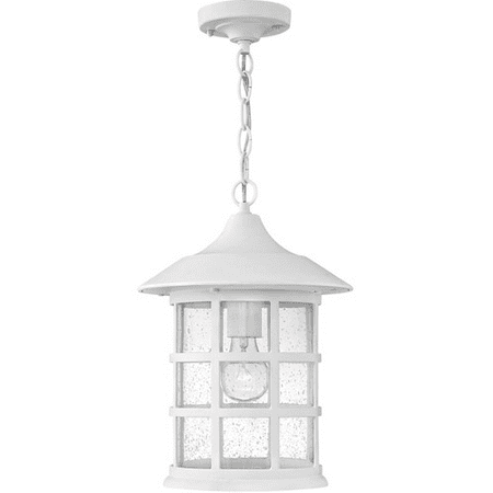 Outdoor Pendant 1 Light With Classic White Clear Seedy Cast Aluminum Medium Base 10 inch 100