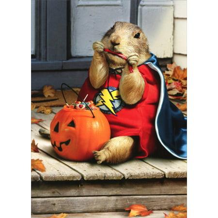 Funny Halloween Greetings (Avanti Press Prairie Dog Super Hero Funny Halloween)