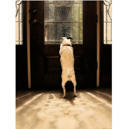 "Trademark Fine Art ""Anticipation 2"" Canvas Art by Gifty Idea Greeting Cards and Such"
