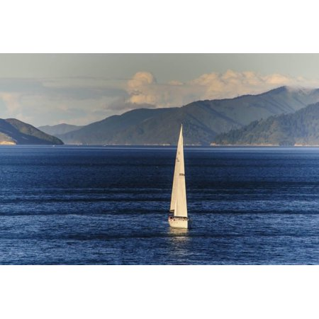 Sailing Boat in the Fjords around Picton, Marlborough Region, South Island, New Zealand, Pacific Print Wall Art By Michael