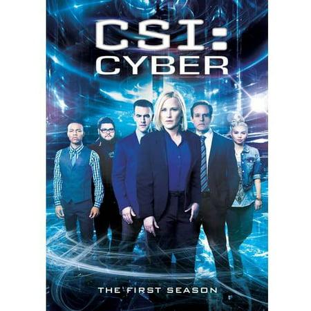 Csi  Cyber  Season One