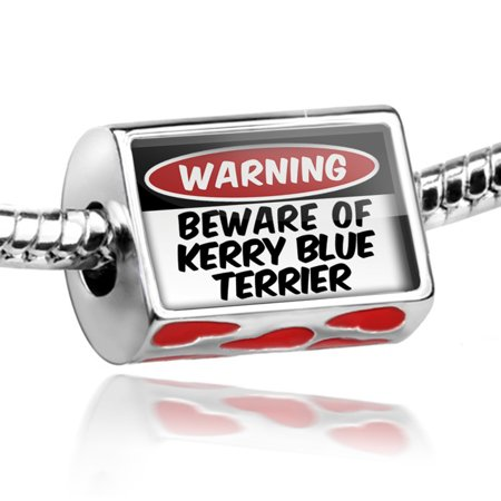 (Bead Beware of the Kerry Blue Terrier Dog from Ireland Charm Fits All European Bracelets)