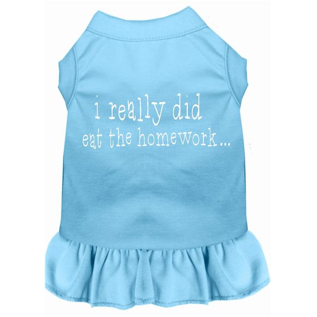 I Really Did Eat The Homework Screen Print Dress Baby Blue 4X (22) - image 1 of 1