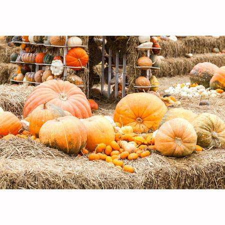 HelloDecor Polyster 5x7ft Happy Halloween Backdrop Pumpkin Photography Backdrops Newborn Family Background Photo Studio Prop