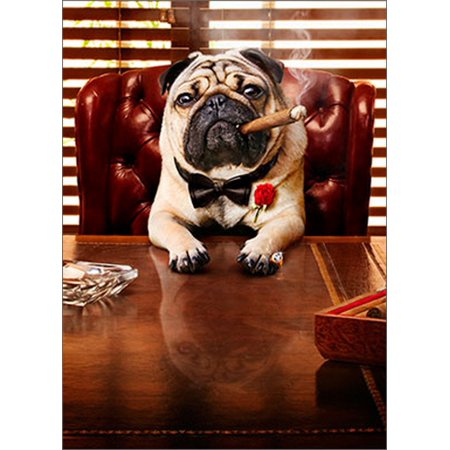 Avanti Press Mobster Dog Funny / Humorous Pug Father's Day Card - Diy Cards