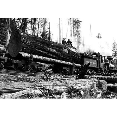 Darius Kinsey was a photographer active in western Washington State from 1890 to 1940 He is best known for his images of loggers and all phases of the regions lumber industry Poster Print by Darius