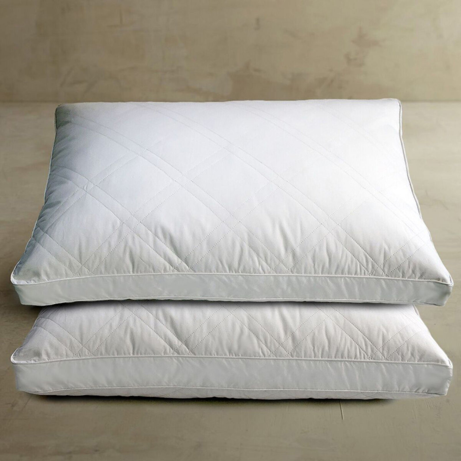 Blue Ridge Home Fashions Down Feather Bed Pillow - Set of 2