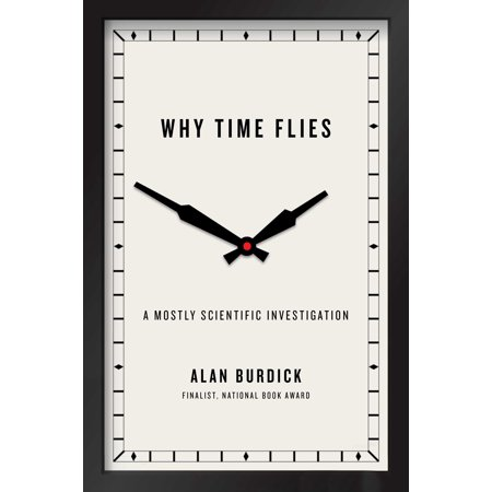 Why Time Flies  A Mostly Scientific Investigation