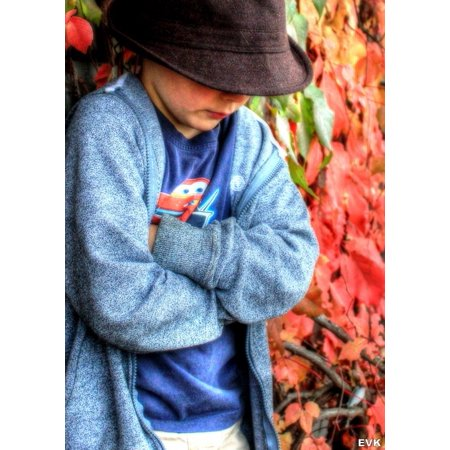 LAMINATED POSTER Pose Fedora Child Thinking Cold Boy Hat Leaves Poster Print 24 x 36
