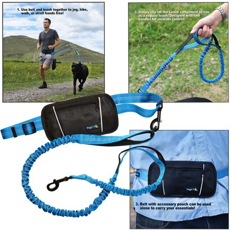 Smart 3-in-1 Design Hands Free Dog Leash with Accessory Pouch - Nylon 4FT Length Double Handles and Bungee for Great Control - Jogging Dog Leash for Medium to X Large Dogs - CORAL BLUE