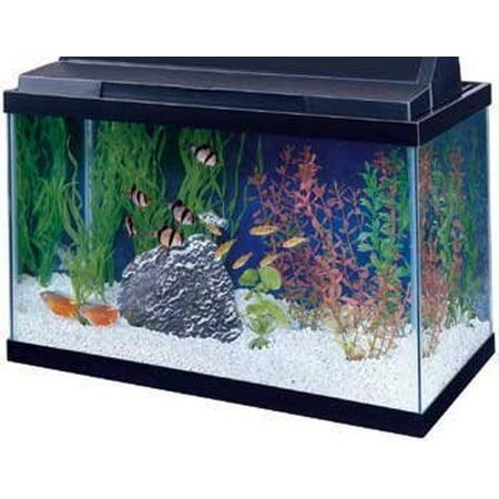 15 Gallon Fish Tanks - All Glass Aquarium Aag10015 Tank Black 15-Gallon (Pack of 1)