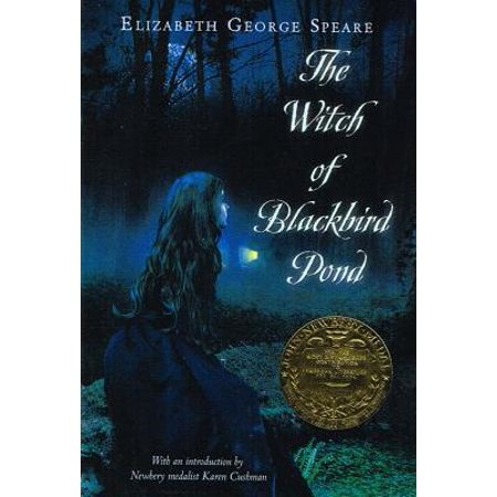 Witch of Blackbird Pond (Short Summary Of The Witch Of Blackbird Pond)