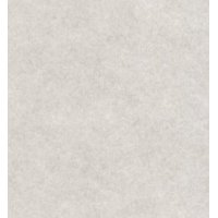 New Smoke - Stationery Parchment Card Stock Size 8.5 X 14 - 65 Lb Cover.(50 Sheets Per Pack)