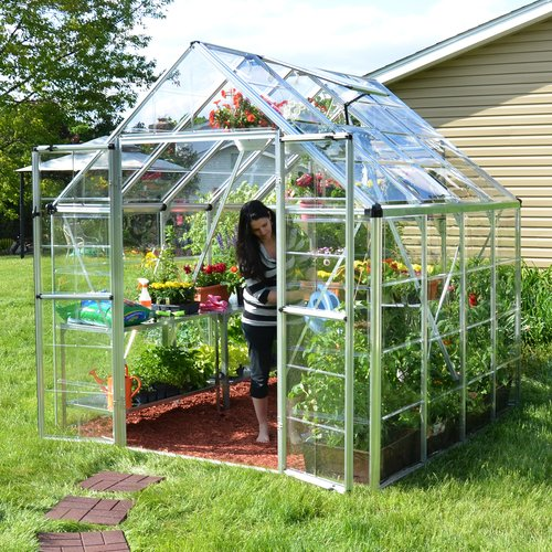 Palram Snap & Grow 8 Ft. W x 8 Ft. D Greenhouse by