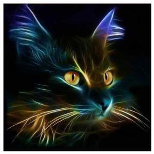 Fancyleo 5D Diamond Painting, DIY Night Cat Cross Stitch Embroidery Craft Kit Home Decor (30 * 30cm)