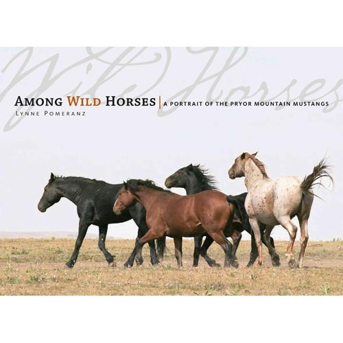 Among the Wild Horses: A Portrait of the Pryor Mountain Mustangs