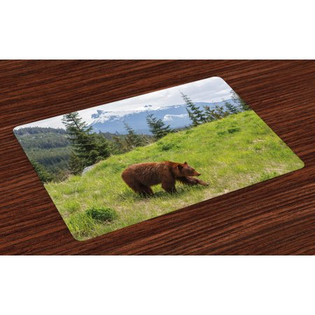 Bear Placemats Set of 4 Wildlife up in the Mountains Theme Furry Animal Carnivore Yellowstone Nature Habitat, Washable Fabric Place Mats for Dining Room Kitchen Table Decor,Green Brown, by