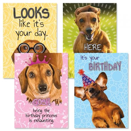 Dachshund Birthday Greeting Cards - Set of 8 (2 of each design) 5