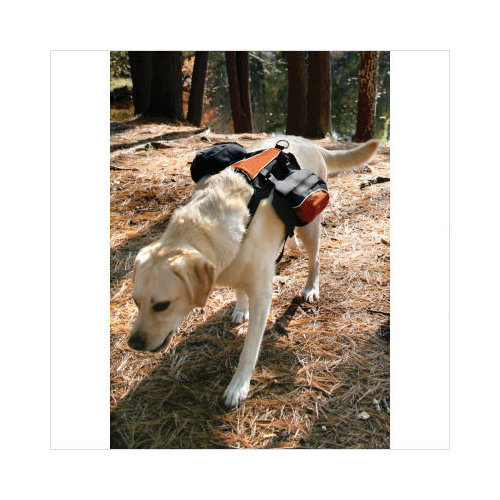 Kurgo Wander Pack Dog Backpack - Walmart.com
