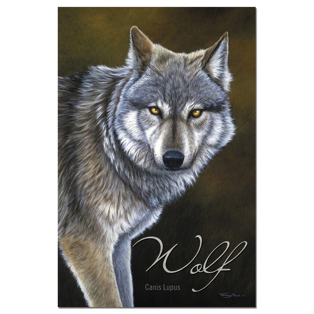 Tree-Free Greetings Classic Wolf Boxed ECOnotes Blank Note Cards-FS66736
