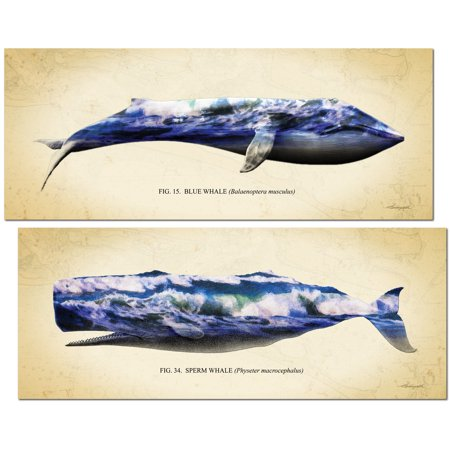 Double Exposure Photography (Beautiful Double Exposure Whale Filled With Ocean Landscape Photography Set; Coastal Decor; Two 18x8in Poster Prints)