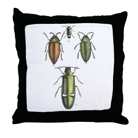 CafePress - Beetle Insects - Decor Throw Pillow