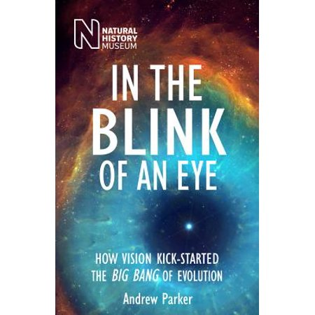 In the Blink of an Eye : How Vision Kick-Started the Big Bang of